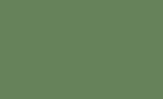 Емаль алкідна ПФ-115 П